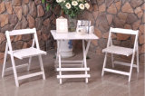 Folded ao ar livre Table e jardim Set de Chair Wooden (M-X1028)