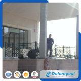 住宅の安全錬鉄の塀(dhfence-20)