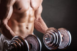 Testosterona Decan do pó da matéria- prima (esteróides) China