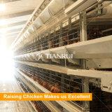 ナイジェリアの農場のための4つの層の層の鶏の家禽電池ケージ