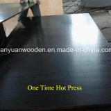 De Fabrikant van Shandong van Shuttering Triplex voor Bouw
