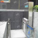 250kg Platform Lift voor Handicapped