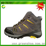 New Arrival Low Price Trekking Hiking Shoe