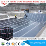 Membrana impermeable bituminosa modificada Sbs auta-adhesivo para las fundaciones