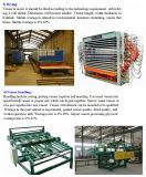 短いサイクルの合板の木製にパネルの合板の薄板になることのための熱い出版物機械
