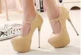 Form-Absatz-Dame-reizvolle Kleid-Schuhe (HCY02-2010)