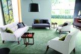 Самомоднейшая мебель Ms1309 дома просто конструкции типа