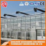 Casa verde de cristal galvanizada industrial del marco de acero
