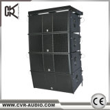 Sistema de matriz de linha dupla de 12 polegadas ativo com 1400 watts Big Outdoor Sound Equipment