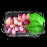 Caisse d'emballage transparente d'ampoule d'animal familier pour le supermarché de fruits et légumes