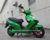1500W/2000W 전기 기관자전차, 전기 스쿠터, 전기 자전거 (독수리 임금)