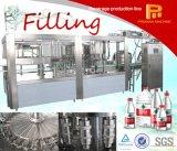 Máquina de enchimento pura automática da água 3 in-1 bebendo da operação fácil