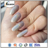 Holo Glitter Powder Pigments, Holograph Glitter Powder for Nail