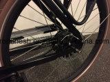 электрический велосипед 250With500W/Elektrische Bakfiet/электрический Bike груза Trike/груза e/трицикл груза семьи/3 шестерни En15194 Nuvinci велосипеда груза колеса автоматических