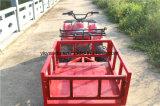 ATV eléctrica, Buggy, UTV Automative de Granja