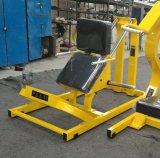 Vitela do equipamento da aptidão da boa qualidade (SM-2009)