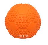 Kleines Kugel-Hundetraining, das Haustier-Spielwaren spielend kaut