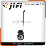 De elektrische Autoped van de Mobiliteit, Autoped Hoverboard met leiden Bluetooth