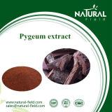 Pó do extrato de Pygeum Africanum