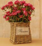 (BC-SF1002) Популярная Handmade естественная корзина цветка сторновки