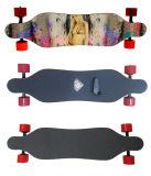 4개의 바퀴 가장 차가운 OEM 전기 소형 Longboard 스케이트보드