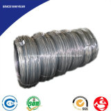 DIN 17223 Grade a BCD Clock Springs Wire