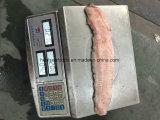 中国のフリーズされたナマズの工場価格
