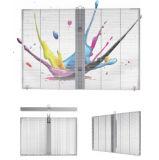 Visualización de pared transparente P20 de la fabricación profesional