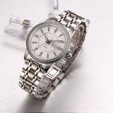 カスタム方法Watch OEM  Jewelry ステンレス鋼の自動腕時計