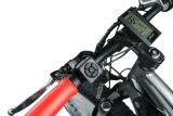 뚱뚱한 타이어 48V 750W 중앙 드라이브 모터를 가진 전기 눈 자전거