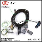 Kinkong изготовленный на заказ автомобильная монтажная схема 2017