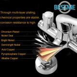 Robinet en laiton de douche de corps de traitement simple (BM-30405)