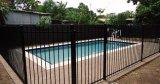 Rete fissa rivestita esterna della piscina della polvere nera di lucentezza