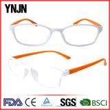 Оптовая оптически рамка Eyeglasses высокого качества Eyeglasses