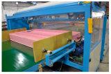 (51M) de Machine van de Verpakking van de Film van pvc van de Matras