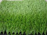 総合的な泥炭、身に着け抵抗20mm-50mmの合成物質の草