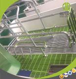 Cassa di figliata automatica di prezzi poco costosi di alta qualità per la scrofa