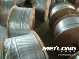 Riga di controllo idraulica del martello dell'acciaio inossidabile di Tp316L tubazione arrotolata