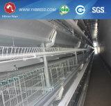 Оборудование цыплятины клетки цыпленка птицы стальное