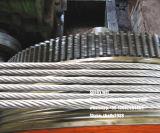 Filo galvanizzato ASTM 475/498, BS183, IEC60888, Jisg 5076 del filo di acciaio