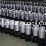 Bomba de agua sumergible eléctrica de QDX con el interruptor de Floator (CE aprobado)