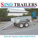 12*6 hydraulisches Tilting Trailer mit Electric Brake