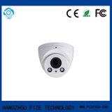 Камера CCTV купола иК сети обеспеченностью малая