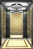 El espejo de la elevación del elevador del pasajero grabó al agua fuerte Sr. y Mrl Aksen Hl-X-024