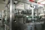 equipo de cristal del embotellado de la cerveza 2000-10000bph