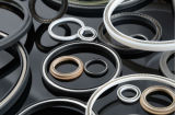 Plástico Seal/PTFE Seals com o Resistance a Harsh Mediums para Sealing