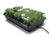 Startwert für Zufallsgenerator Planter Tray/Insulated Seeding Heating Mat/Garten Germination Station mit Heat Mat