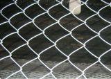 大きい割引! チェーン・リンクの塀の製造業者/チェーン・リンクの金網