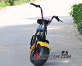 Motocicleta sin cepillo eléctrica de Scrooser 800W del estilo de Citycoco Harley del neumático del coche 18*9.5