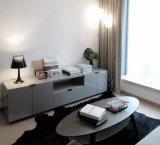 Мебель комнаты & спальни Kaviar живущий с самомоднейшей конструкцией (HF-09)